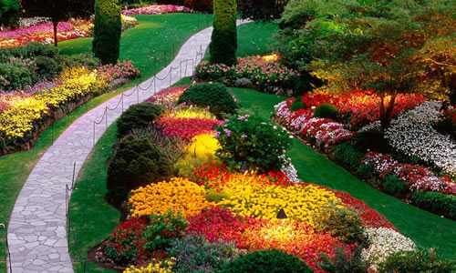 why use arbor tree care for landscape design in cincinnati oh with tree  service cincinnati oh. - Tree Service Cincinnati Oh. With Tree Service Cincinnati Oh. How